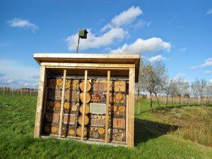 Bijenhotel en nestkast valk aan rand van poel op biologische boomgaard Hoeve de Heivelden