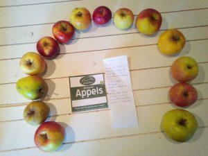 Appels halve cirkel